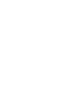 accessibility option